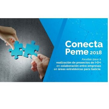 conecta_peme_2018